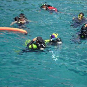 Snorkeling Trip From El Gouna