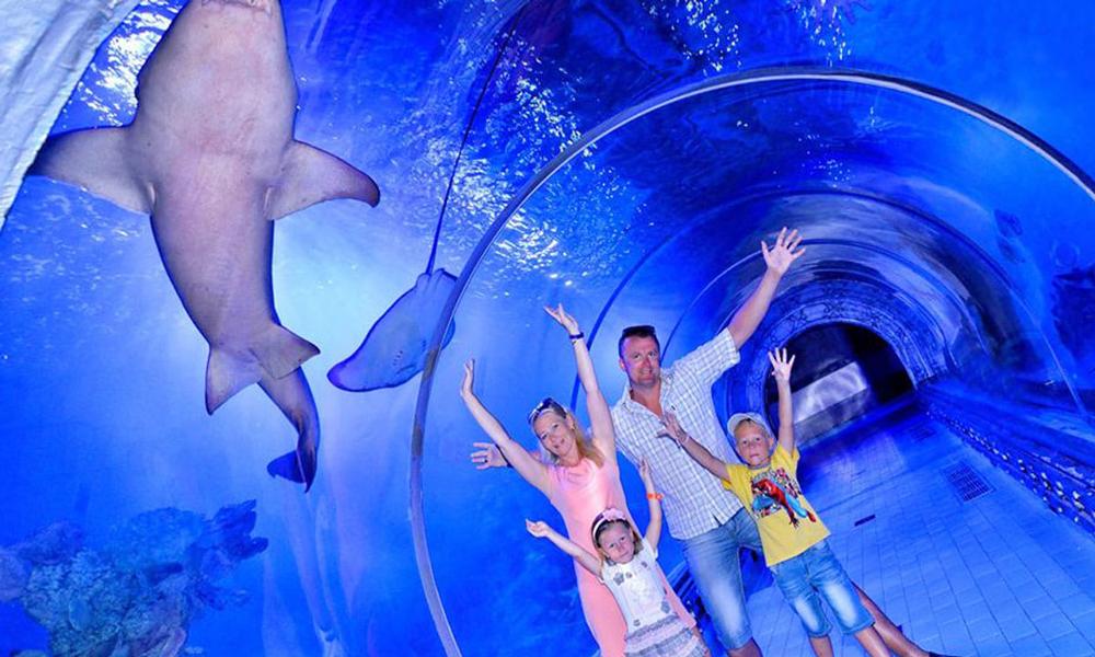 Hurghada Aquarium - Things to Do in Hurghada - Egypt Tours Portal