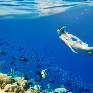 Snorkeling Trip in Hurghada