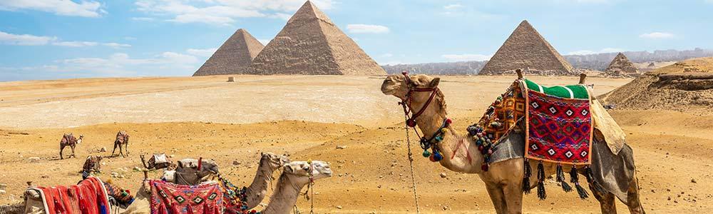 Riding Camel in Giza Pyramids Itineray